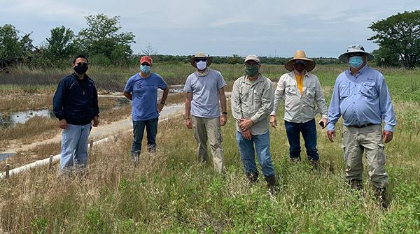 CRP Wetland Project