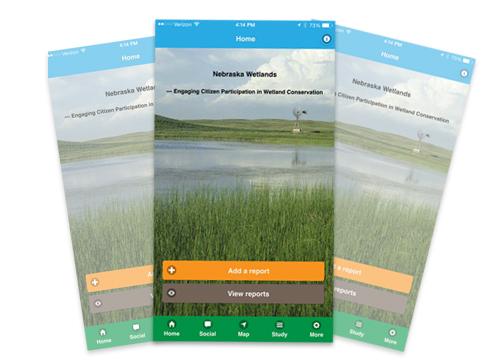 NE Wetland App
