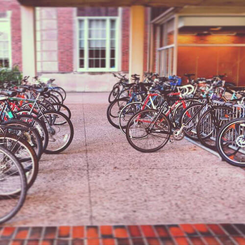 Row of bikes outside building