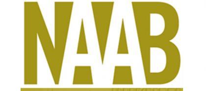 Naab logo